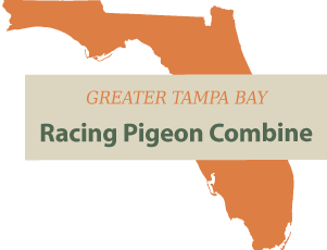 Greater Tampa Bay Racing Pigeon Concourse